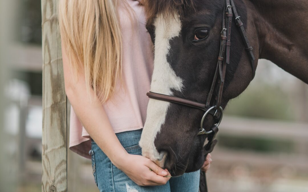 Horse coaching: el caballo como espejo de lo que transmitimos