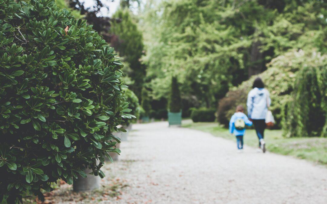Mediación familiar: cuando el cuidado de los niños recae sobre la madre